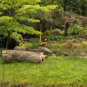 Klidná příroda