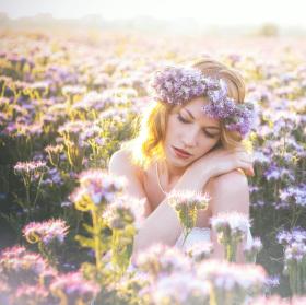 Violet field II