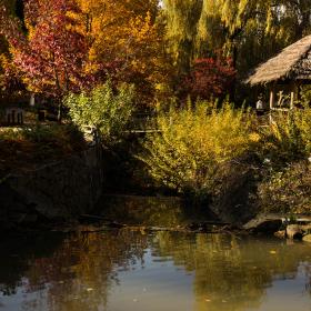 Podzimní snímek v ZOO Lešná