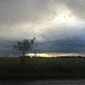 Cesta v dešti