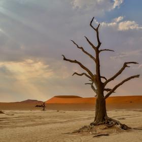 Poušť Sossusvlei - Namibie