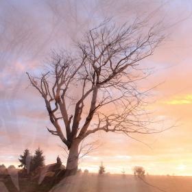 Podzimní svítání na Šumavě