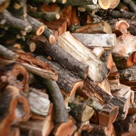 Ráz dřeva