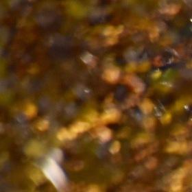 Cesta podzimni krajinou