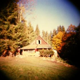 Podzim s Holgou  III