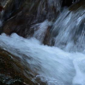 Voda***