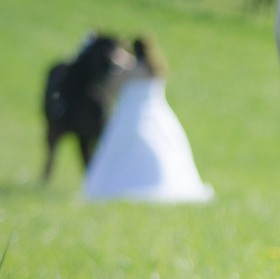 Konec kariéry svatebního fotografa :-)