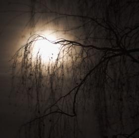 V měsíčním svitu