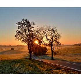 Svítání u Olešné