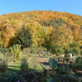 Hora Květnice, zbarvená podzimem.