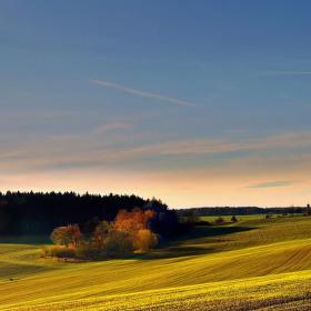 podzimní světlo