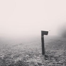 Column in the fog