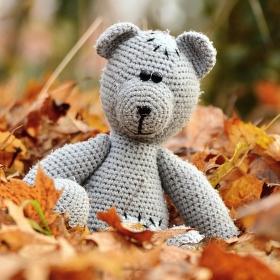 Medvídek v listí