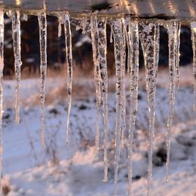 za ledovou mříží