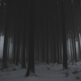 melancholy winter no.2