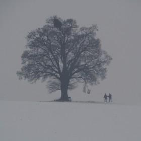 Samotáři u samotáře