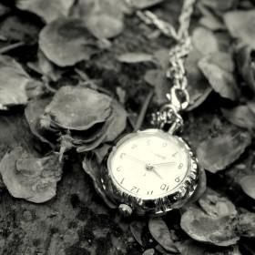 Zapomenutý čas