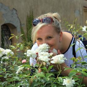 Zahrada růží