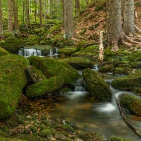 zelené údolí ..