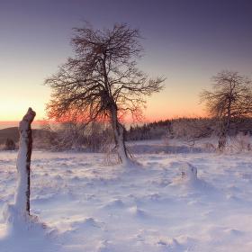 Svítání na Lesenských pláních
