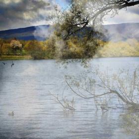 Na rybníce po dešti
