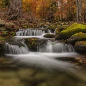 Poniklý potok