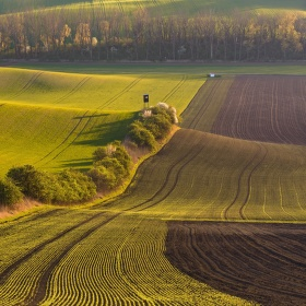 V polích Moravského Toskánska