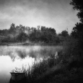 V ranním mlžném oparu