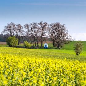 Jižní Morava na jaře