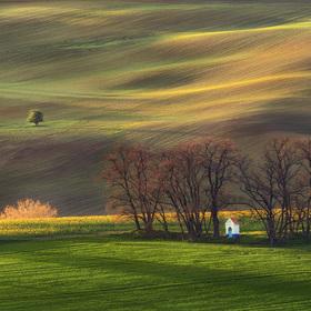 Rozjímání v polích