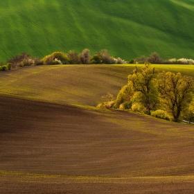 V polích....(jak jinak) ;)