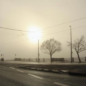 Mlhavé nábřeží