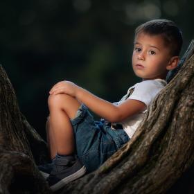 Na stromě