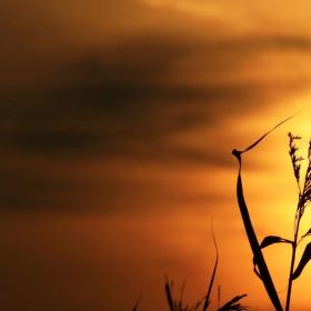 Když se slunce loučí nad Lipnem