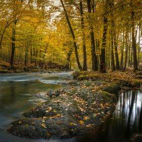 Podzimní Doubrava