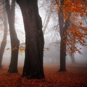 ...podzimní park ve Výsluní