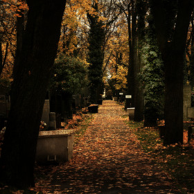 hřbitov Praha Malvazinky před dušičkami 2