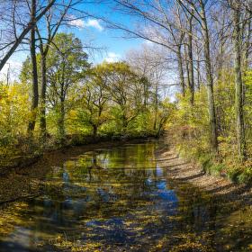 Panorama podzimu