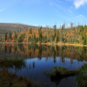 jezero Laka ... za současného stavu Šumavy