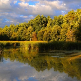 Barevný rybník
