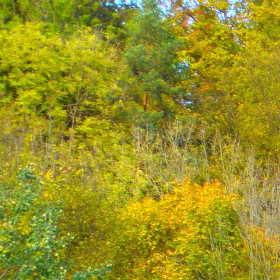 Josefův Důl  v podzimním čase