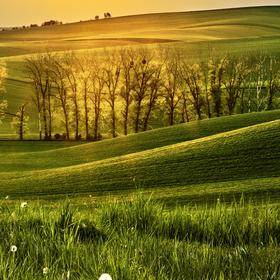 Světlo v krajině