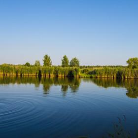 Chomutovský rybník