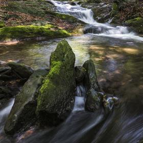 Studený potok - Jeseníky