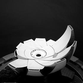 Lotosový květ...