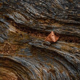Dřevěný proud