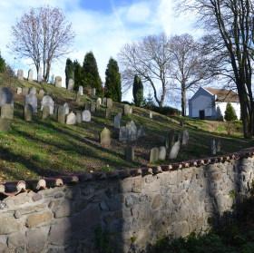 Židovský hřbitov ve stínu stromů.