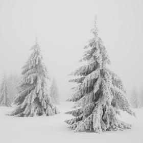 Šumavská zimní náladovka
