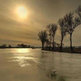 Zlatý rybník