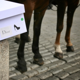 Dior shoes for your hooves